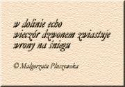 Małgorzata Płoszewska Foto Grafika Zima